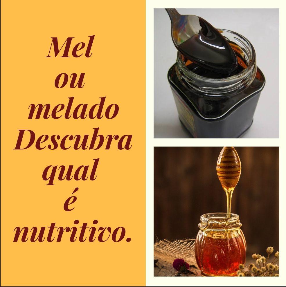 Mel de abelha e Melado de cana, descubra qual é mais nutritivo.