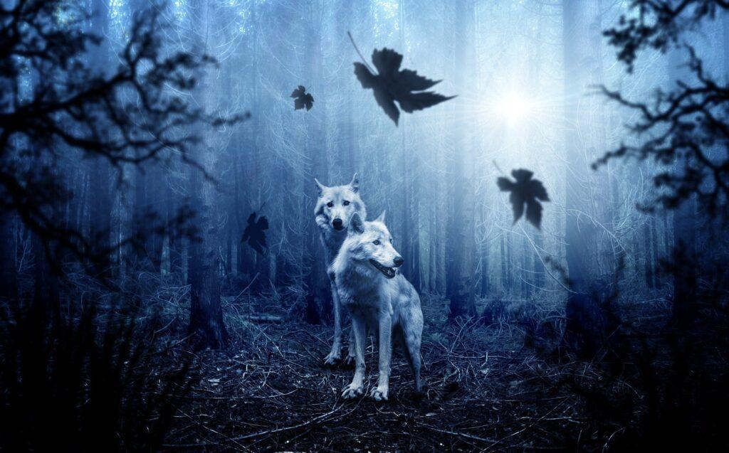 Parábola dos dois lobos